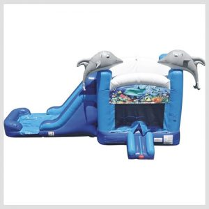 baby-dolphin-water-slide