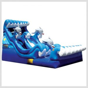 dolphin-water-slide