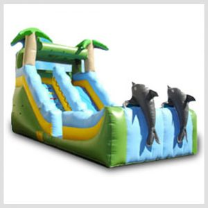 dolphins-water-slide